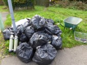 Autumn Litter Pick 2017